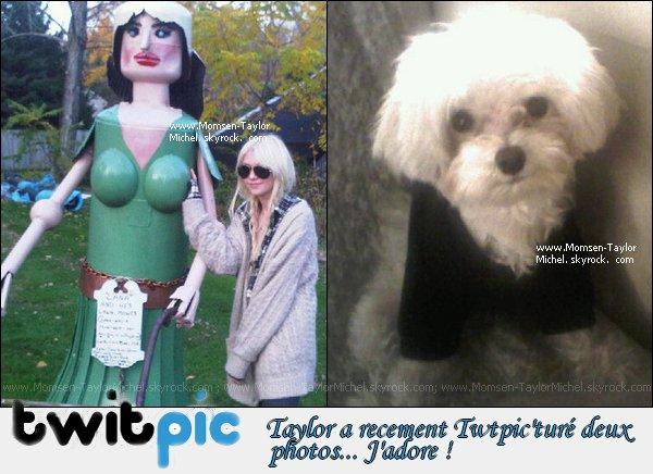 .TWITER ; Taylor a posté une photo d'elle meme ainsi qu' une photo de sa chiene, Petal..