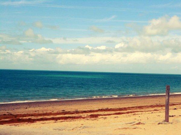 Summer on t'attend !!!!!!!!! ( photo prise par moi )