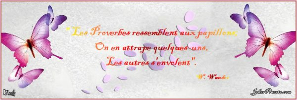citations et proverbes !