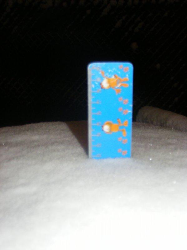 12 cm de neige ce matin