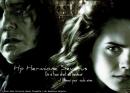 Photo de Hp-hermione-severus