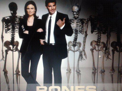 Présentation de Bones