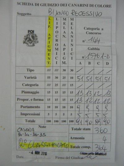 Questi sono i risultati dello STAMM di BIANCHI RECESSIVI alla MOSTRA DI CASORIA - NA