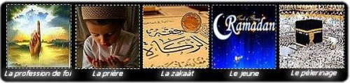 Chapitre 2 :  Les 5 pilliers de l'Islam .