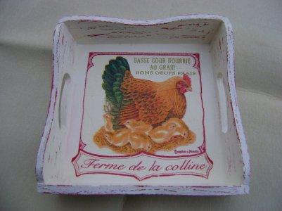 et voilà quelques poulettes....