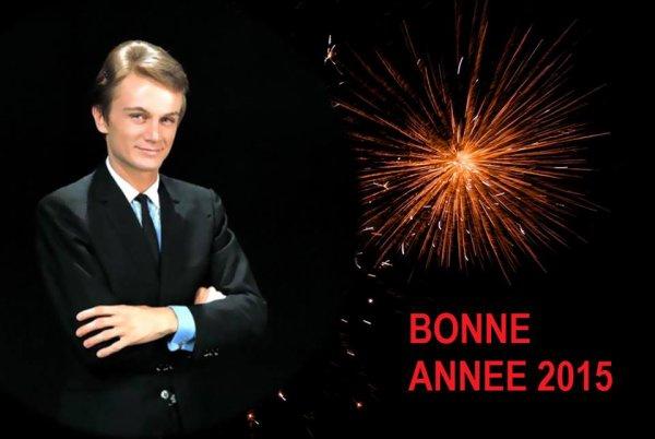 Bonne année 2015 à tous ♥♥♥