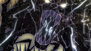 Raiton - Panthère noire