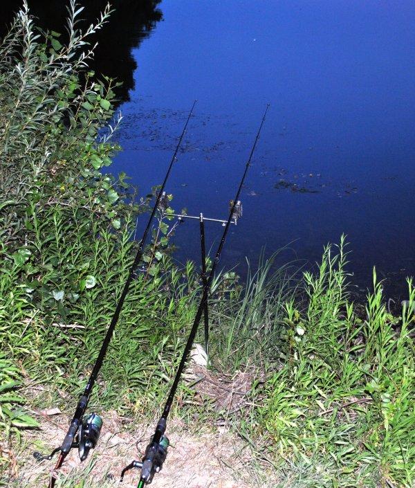 Une petite nuit en fleuve