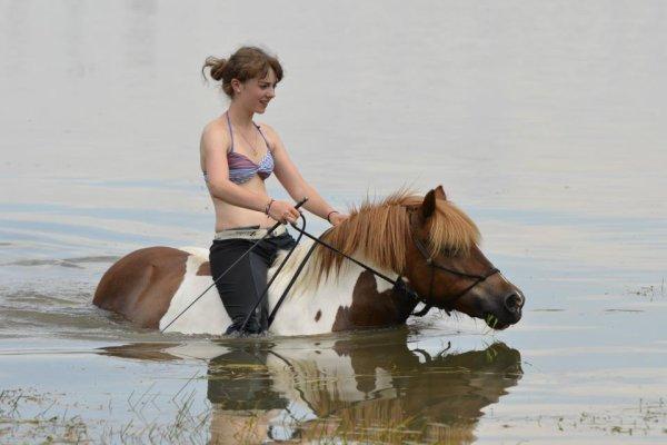 """""""Le cheval n'a pas demandé à faire d'équitation. Le premier devoir du cavalier, c'est donc d'essayer de lui faire apprécier ce boulot"""""""