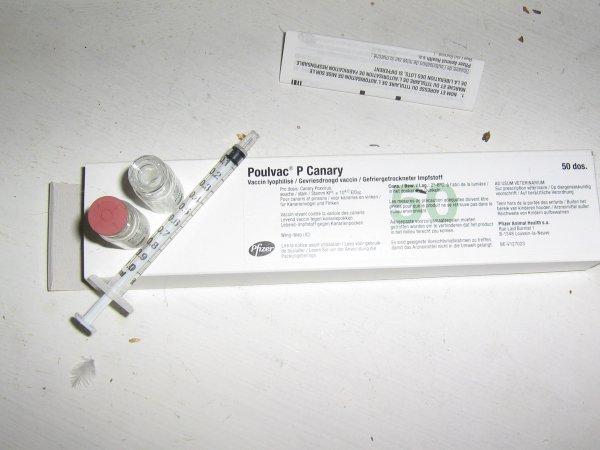 Vaccination contre la Variole 2012.