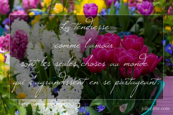 **************** POEMES  ********************* CITATIONS
