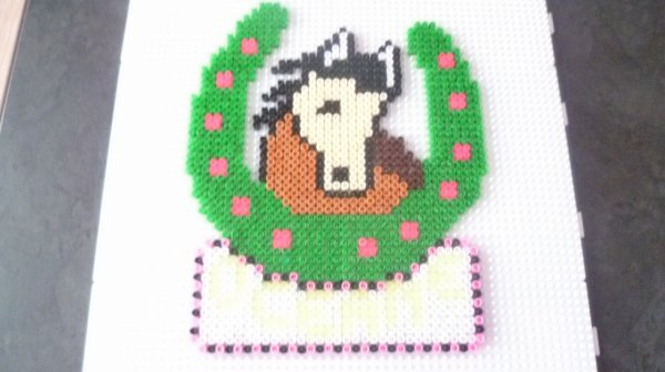 fer a cheval pour oceane ( merci a betty 59480)