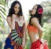 bella-twins-fan
