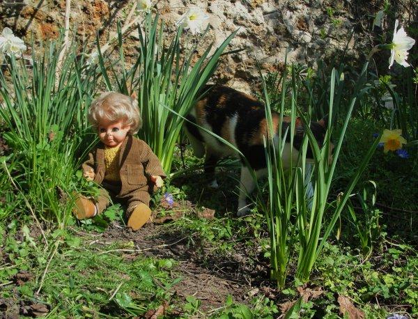 Jean-Michel au jardin