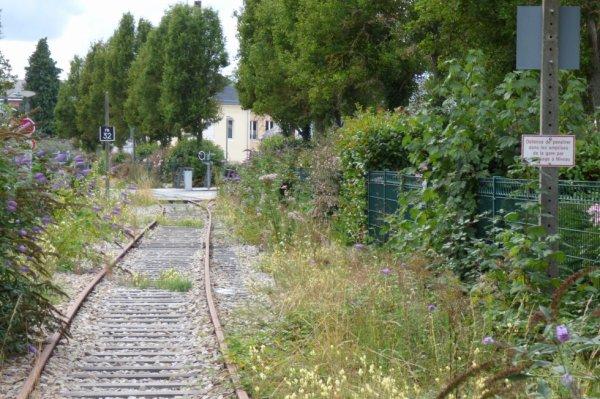 Pont Audemer - Voie vers Honfleur