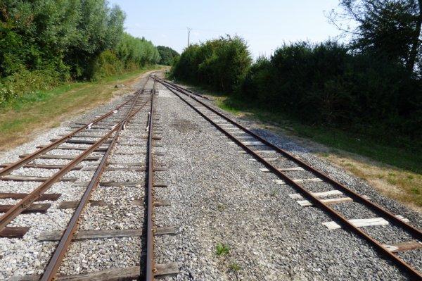 Faisceau de voies à la gare de Cayeux