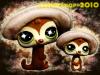 petshop lemurien