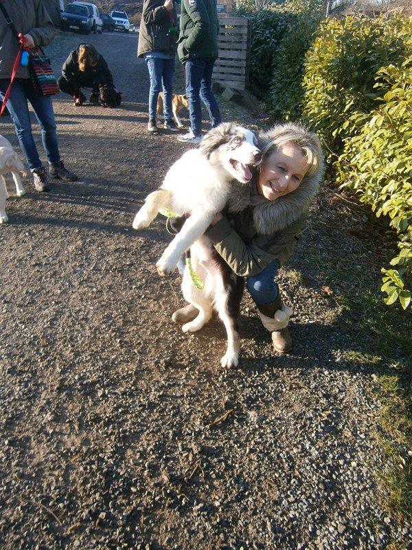 Blue, le chien de ma fille