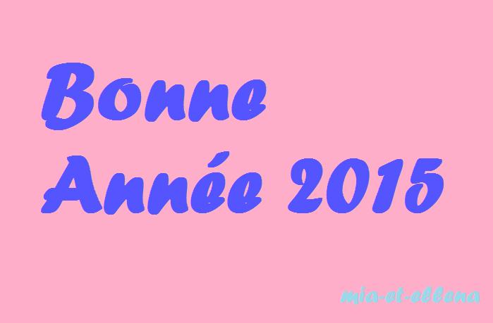Bonne Année ♥