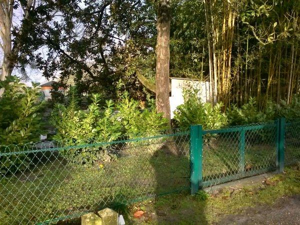 quelques photos du parc bordelais de cauderan en ce dimanche matin le 2/02/14 avec ma frangine et groupe damie,pour une randonnée. de 6k200