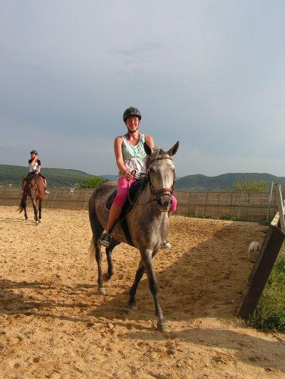 Ma 2ème passion: l'équitation, les chevaux