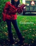 Photo de casse-x19