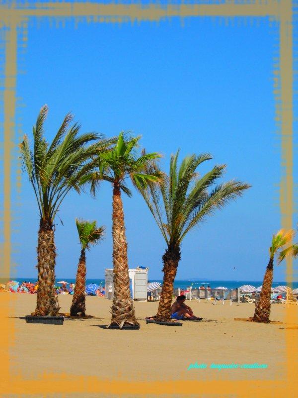 Les vacances 2011- LA MEDITERRANEE.