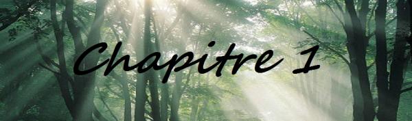 Acte 4: Chapitre 1