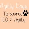 Agility-Dogs