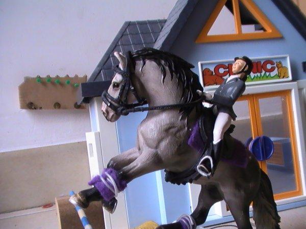 concour photo show du centre equestre de kerda