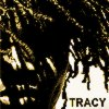 Why - Tracy Chapman ♪