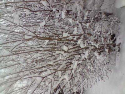 moi en dessous la neige