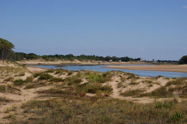 Septembre 2012 - Derrière les dunes de la plage du Veillon