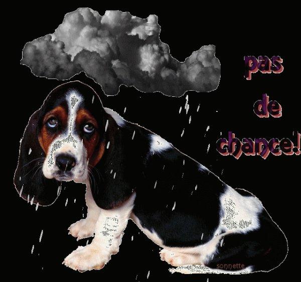 ♥♥♥ Qu importe le mauvais temps s il fait soleil dans ton coeur ♥ BONNE JOURNEE A TOUS♥♥♥