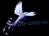 the-lonely-soul