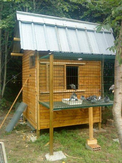 Pigeonnier des reproducteurs fabriqué cet été