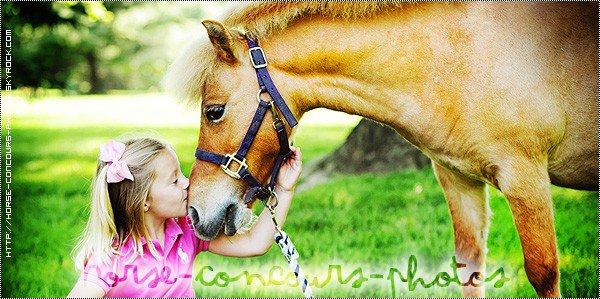 Un blog pour partager nos passions, la photographie & l'équitation .