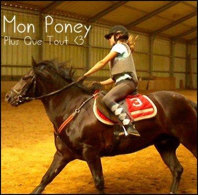 """4ème Participant pour le concours """" Moi et mon/mes chevaux """" ."""