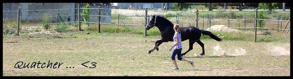 """5ème Participant pour le concours """" Moi et mon/mes chevaux """" ."""