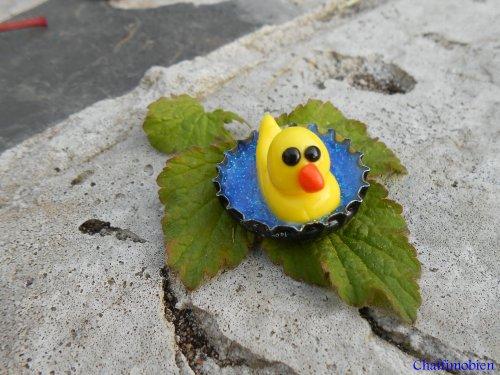 Petit canard dans son bain  inspirée d'une vidéo youtube