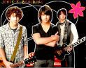 Photo de 9-jonas-brothers-9