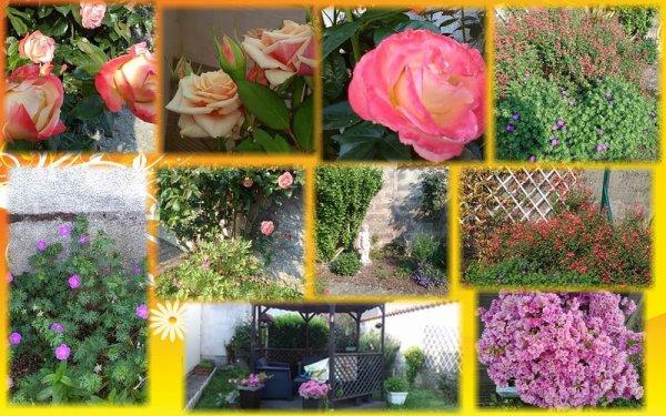 Mes fleurs du Jardin ..............