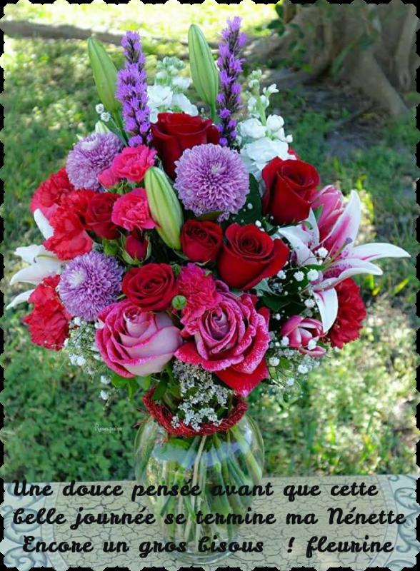 Francis Goya - Merci Ma Fleurine pour ce beau cadeau