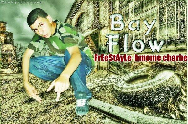 Bay Flow