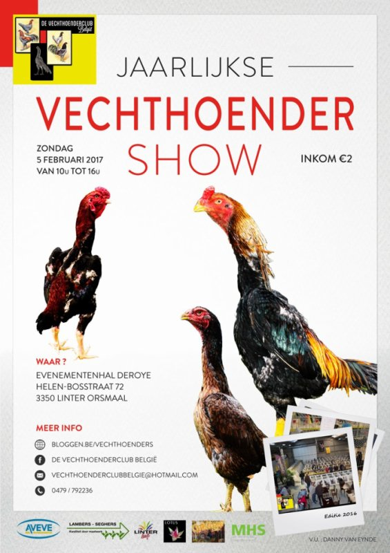 Exposition combattants Linter Belgique !!!
