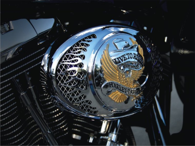 heart hacking HARLEY DAVIDSON ""