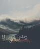 Hogwarts-university
