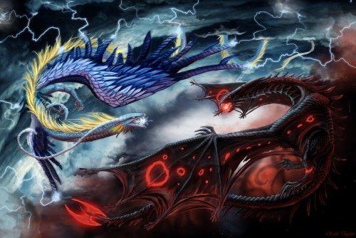 Deux magnifiques Dragons