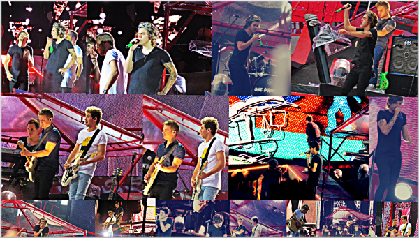 One Direction à Berne ! ♥ (05.07.14)
