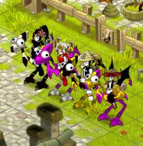 Xk-Team